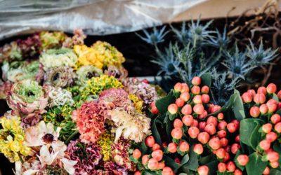 20 municipios valencianos se llenarán de montajes florales para ayudar a los floristas