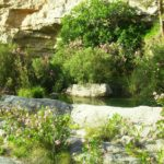 Descubre los Espacios Protegidos de la Comunidad Valenciana