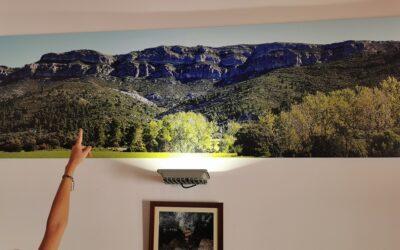 """¿Sabías que el """"cocodrilo"""" más grande del mundo está en la provincia de Valencia?"""