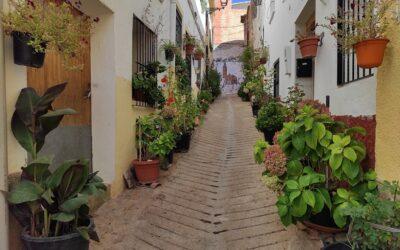 Jarafuel, villa de fuentes y de la artesanía del almez