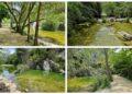 Els Plans de Senabre. Fotos valenciabonita.es