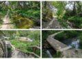 Senda Ecológica Font de Baladre - Fontanars - Riu d'Agres. Fotos valenciabonita.es
